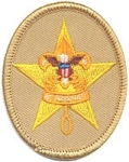 Boy Scout Star Patch